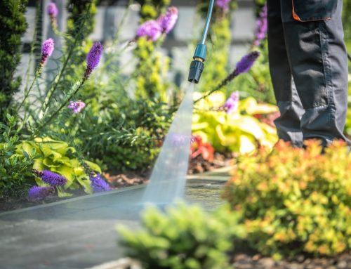 Καθαρισμός κήπου για την Άνοιξη