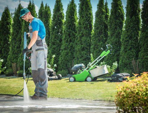 Επαγγελματικός καθαρισμός κήπων