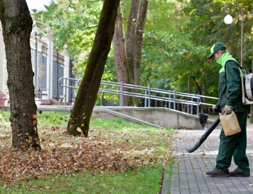 Γιατί ο εξωτερικός καθαρισμός του σπιτιού είναι απαραίτητος
